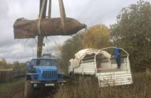 На Смоленщине взорвали 250-килограммовую авиабомбу: в Сети появилось видео