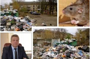 Жители Ярцева жалуются на нашествие крыс в их дома