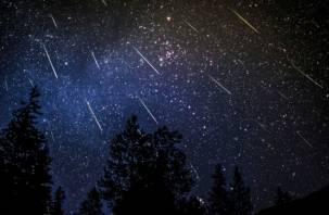 Смоляне смогут увидеть до 20 метеоров в час