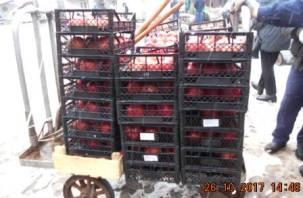 На Заднепровском рынке Смоленска нашли запрещенные продукты