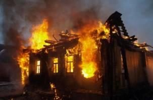 В Починковском районе при пожаре погиб мужчина