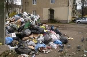 Центральные улицы Ярцева завалены мусорными свалками