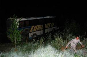 На трассе М-1 под Смоленском автобус с пассажирами слетел в кювет