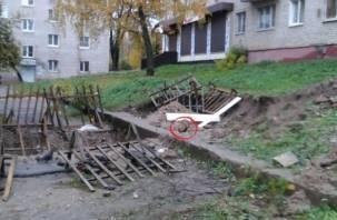 В Смоленске под плитами теплосетей замуровали щенков