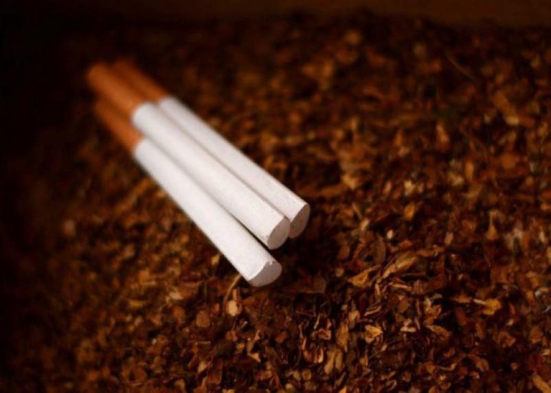 Сколько нынче стоит нелегальный табак в Смоленской области