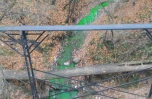 Жители Смоленска обнаружили зеленую реку в городе