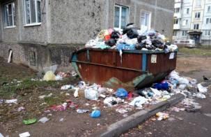 Жители улицы Автозаводской в Смоленске устроили срач в собственном дворе