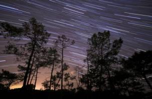 В ночь на субботу смоляне увидят метеоритный ливень