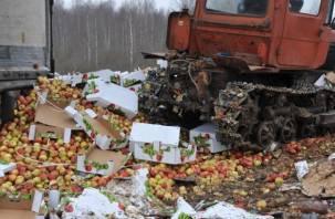 «Не доставайся ж ты никому». Две тонны овощей и фруктов закопали в смоленскую землю