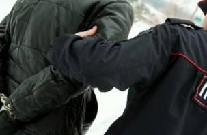 Смоленский грабитель-рецидивист ударил полицейского по голове