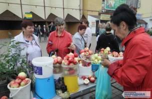 В Смоленске хотят приватизировать Заднепровский продовольственный рынок