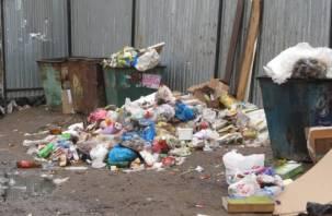 Ярцево снова зарастает мусором