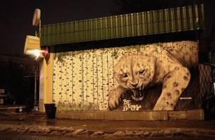 В Смоленске появилось очередное эко-граффити