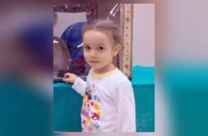 Смолян просят помощи в поиске ребенка, которого похитил отец