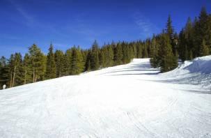 Полетаем: смоляне могут проехать с ветерком с 300-метровой горы