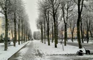 В начале декабря в Смоленской области будет аномально тепло