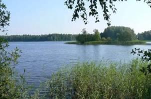 Как ради коттеджей смоленское озеро в пруд превратили