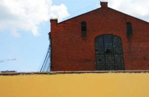 В Смоленске выстрелы остановили осужденного, решившегося на побег из СИЗО