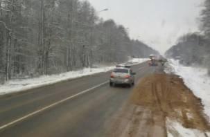 В Смоленской области пешеход попал под колеса грузовика