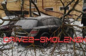 В центре Смоленска «Опель» получил по крыше деревом