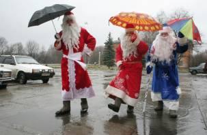 Смолянам обещают в новогоднюю ночь весеннюю погоду
