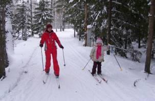 Смолян приглашают покататься на лыжах в Реадовке.