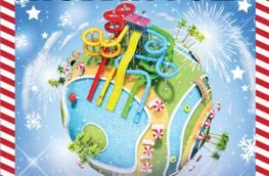 Смолян приглашают провести незабываемую новогоднюю ночь в аквапарке «Лебяжий»