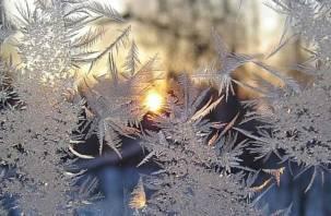 Аномальные морозы в ЦФО. Смолянам советуют тепло одеваться