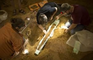Древний меч, найденный под Смоленском, будет храниться в Историческом музее в Москве