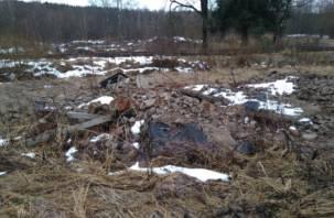 Смоленские активисты ОНФ требуют навести порядок возле Ключевого озера