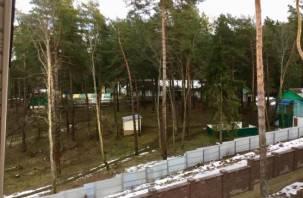 «Спрячь за высоким забором». Смоленские детские лагеря обносят неприступной оградой