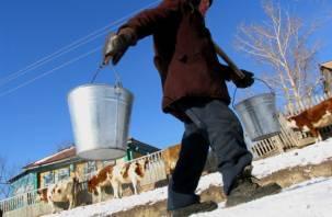 Жители смоленской деревни пьют опасную воду