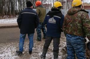 Народный фронт отреагировал на «распил» Соловьиной рощи в Смоленске