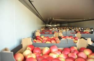 ЧерезСмоленскую область пытались провезти «пивные» яблоки