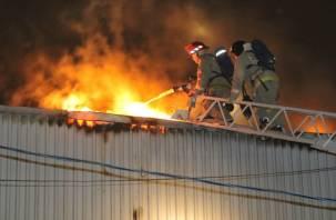 Появились фото крупного пожара на смоленском производстве