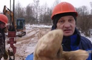 В рощу без разрешения: в Смоленске продолжает разгораться скандал вокруг застройки лесопитомника