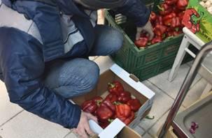 Десятки тонн овощей и фруктов закопали в смоленскую землю
