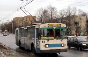 В Смоленске кондуктор троллейбуса наорала на ребенка и пыталась его высадить
