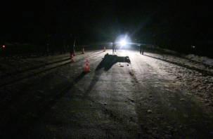 В Смоленской области водитель сбил пешехода и бросил его умирать