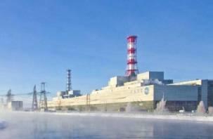 Смоленская АЭС отлично прошла проверку на безопасность