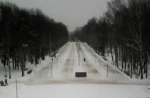В Реадовском парке дорожки для лыжников засыпали песком