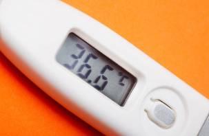 В Смоленской области ОРВИ и грипп пошли на спад