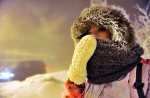 На Смоленщине объявлен оранжевый уровень опасности из-за аномальных морозов