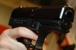 В Смоленске подростки подшофе устроили стрельбу
