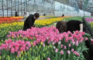 Смоленщина в лидерах по экспорту … цветов