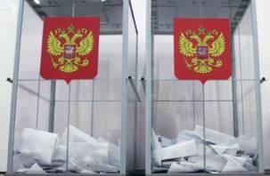 В Смоленской области стартовали выборы президента России