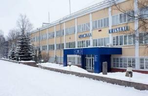 Смоленский завод «Кристалл» всё-таки будет приватизирован