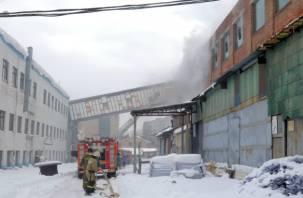 Стали известны подробности пожара на заводе холодильников в Смоленске