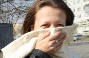 В Смоленске стало опасно дышать