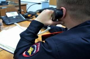 Смолянин рассказал полицейским сказку об угоне его автомобиля